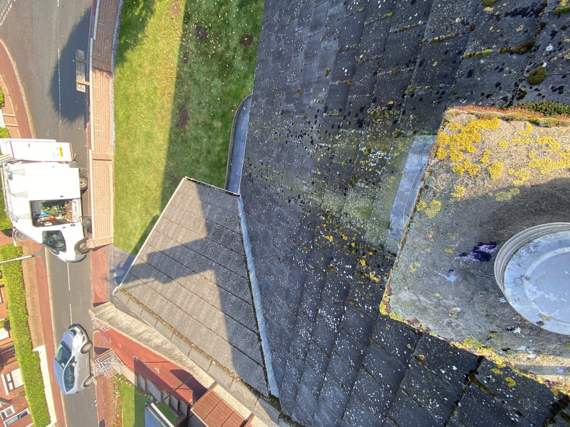 ROOF CLEAN
